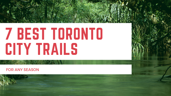 7 Best Toronto City Trails for any season